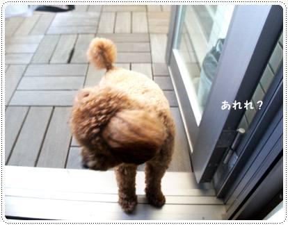 20120820_door2.jpg