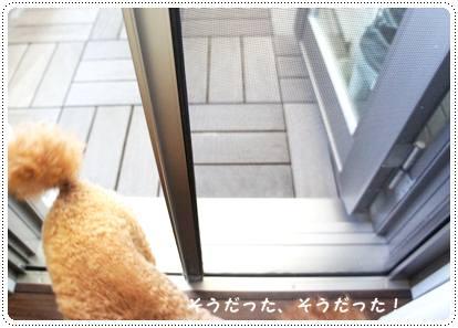 20120820_door4.jpg