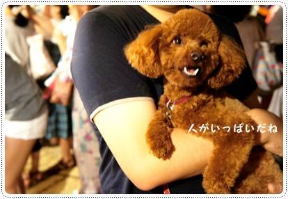 20120827_summer4.jpg