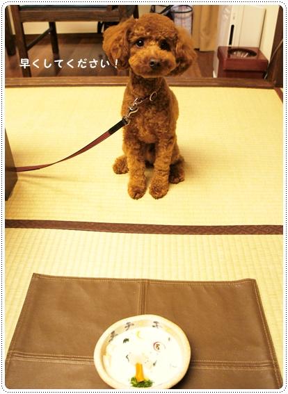20121003_syuzenji11-2.jpg