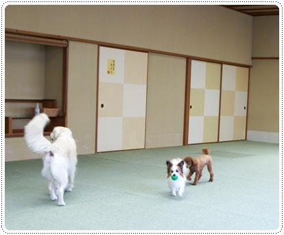 20121005_syuzenji1.jpg