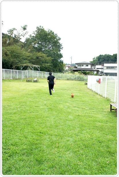 20121005_syuzenji2.jpg
