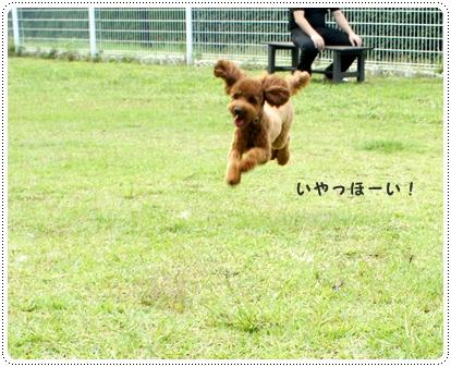 20121005_syuzenji3.jpg