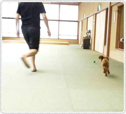 20121005_syuzenji6.jpg