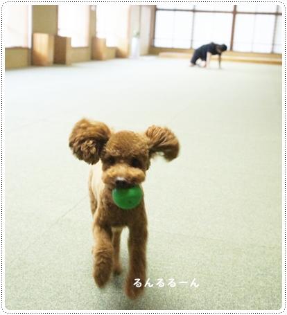 20121005_syuzenji7.jpg