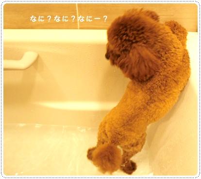 20121017_bath2.jpg