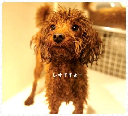 20121017_bath3.jpg