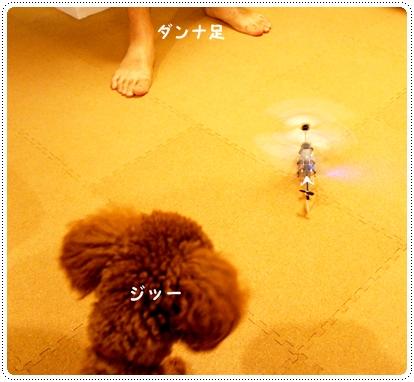 20121017_flying5.jpg