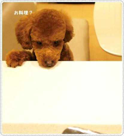 20121022_cut6.jpg