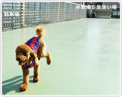 20121024_takashimaya5.jpg