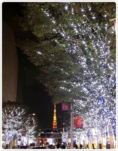 20121112_winter2.jpg
