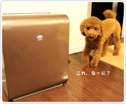 20121203_humidifier1.jpg