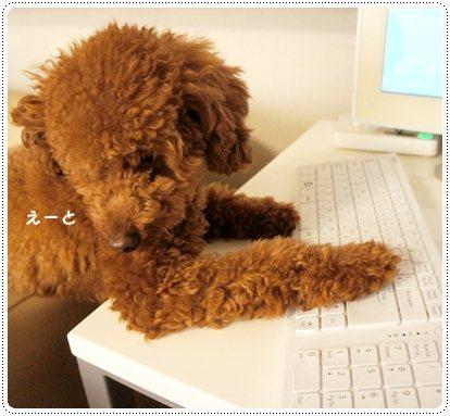 20121203_work1.jpg