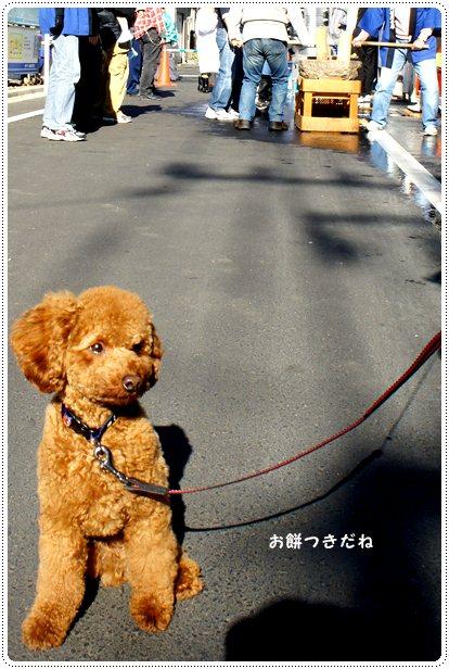 20121210_mochi1.jpg