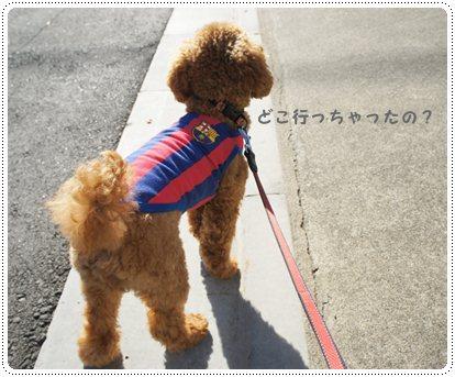 20121217_election3.jpg