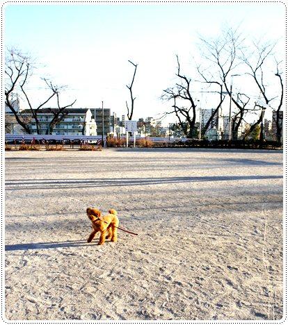 20130111_sanpo3.jpg