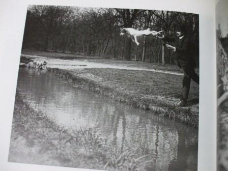 ラルティーグ展1986 4