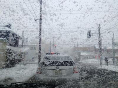 13-3月の雪