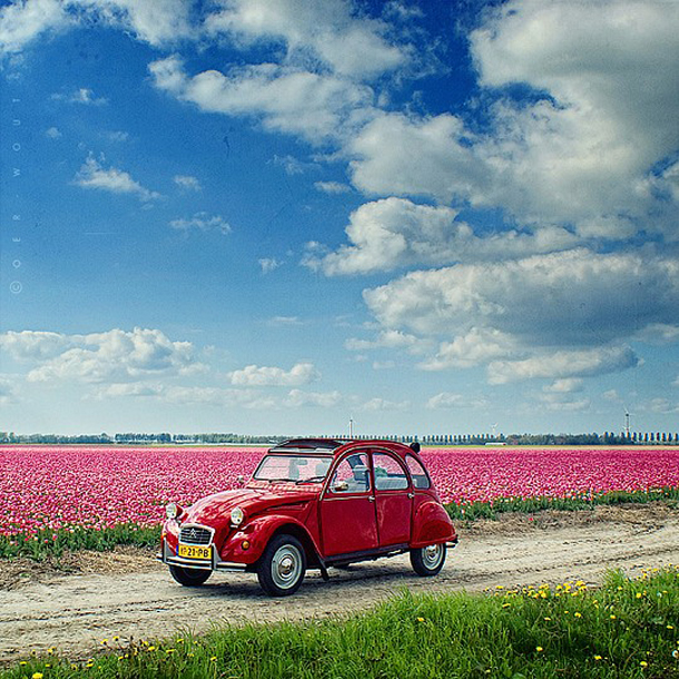 039-stunning-photography-oerwout.jpg