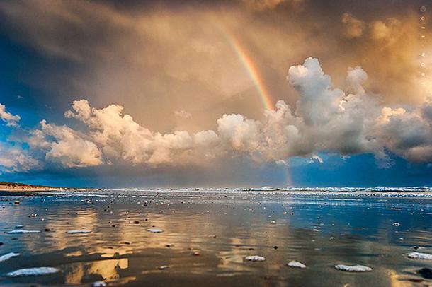 042-stunning-photography-oerwout.jpg