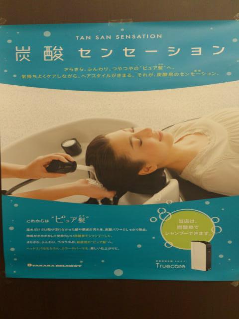 DSC_0206_convert_20120610212519.jpg