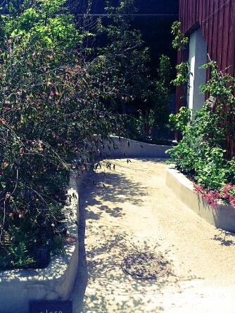 fc2blog_20120511011414b2a.jpg