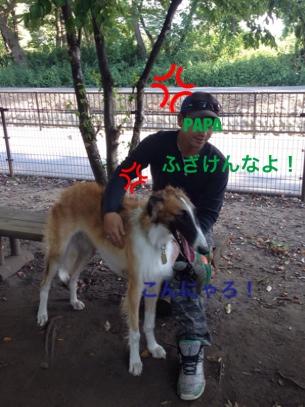 fc2blog_20141025210922550.jpg