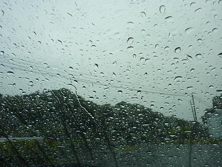 奄美、雨の朝