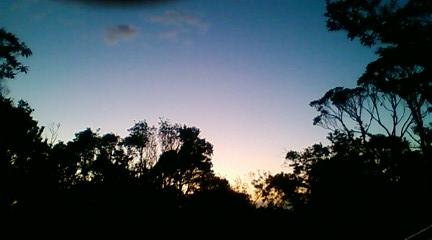 やんばるの日没
