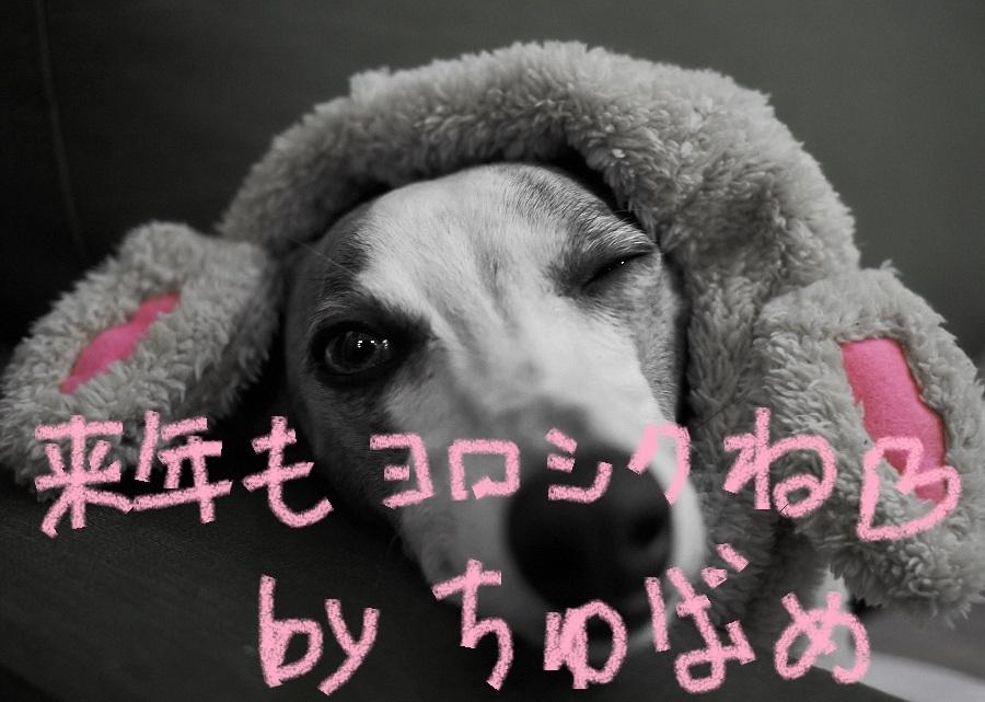 2012_last.jpg