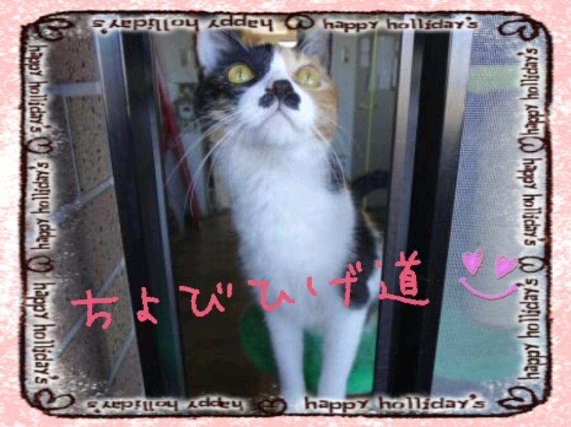 s_2012-10-04_09.27.11 (3)