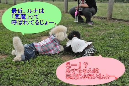 リコ&コテひそひそ話