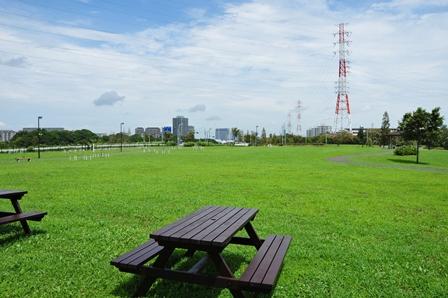 ドッグラン風景20120715