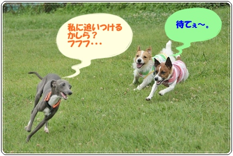 ペネちゃんとJRT