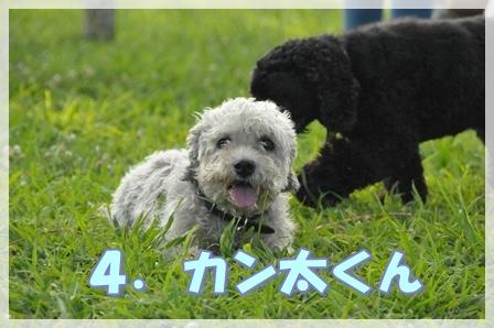 4.カン太くん
