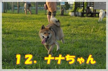 12.ナナちゃん