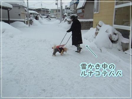 雪かきぱぱ