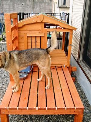 5-8犬小屋
