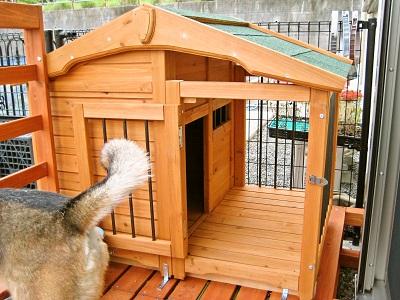 5-8 犬小屋2
