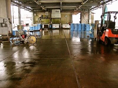 鞆浦漁協 市場