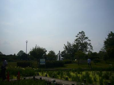 2日平成の森公園19
