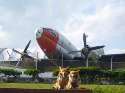 3日航空公園1