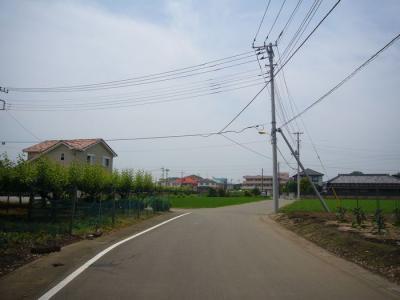 15日朝散歩6