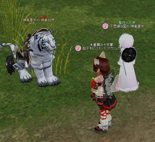 神楽白虎との出会い