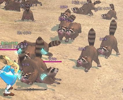 タヌキの大攻撃