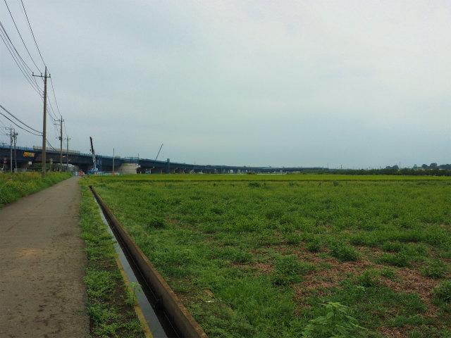 五霞インター方面。橋脚が見えている部分が4車線と暫定2車線の境界。