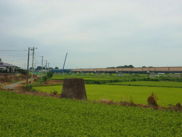 画面左が利根川方面。
