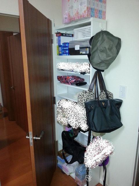 【DIYとインテリア生活】 マンションDIYデッドスペース活用ドア裏収納(扉裏収納)IKEABESTA設置
