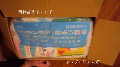 DSC05728_convert_20120427025413.jpg