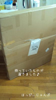 DSC05789_convert_20120429012736.jpg